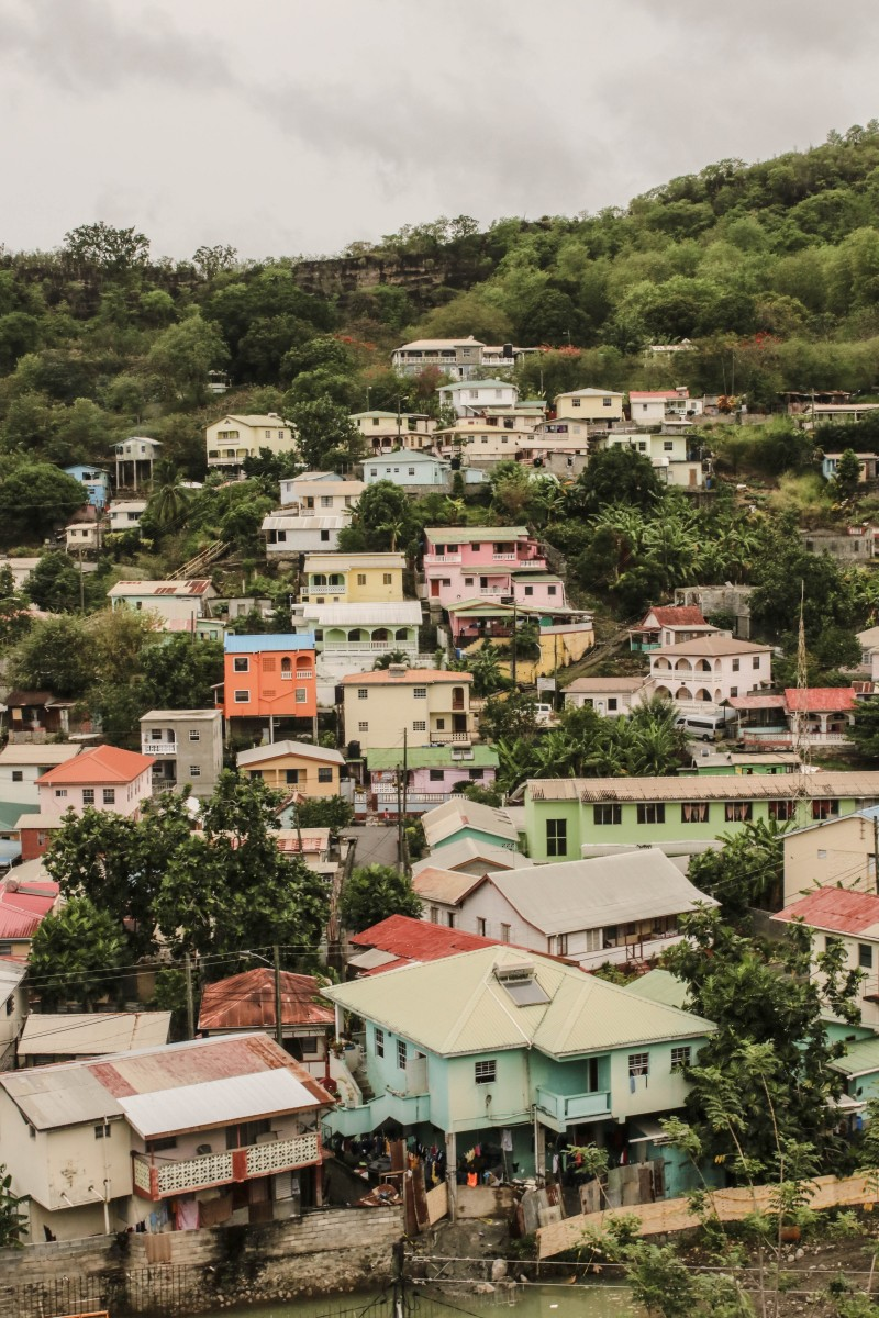 Canaries St Lucia