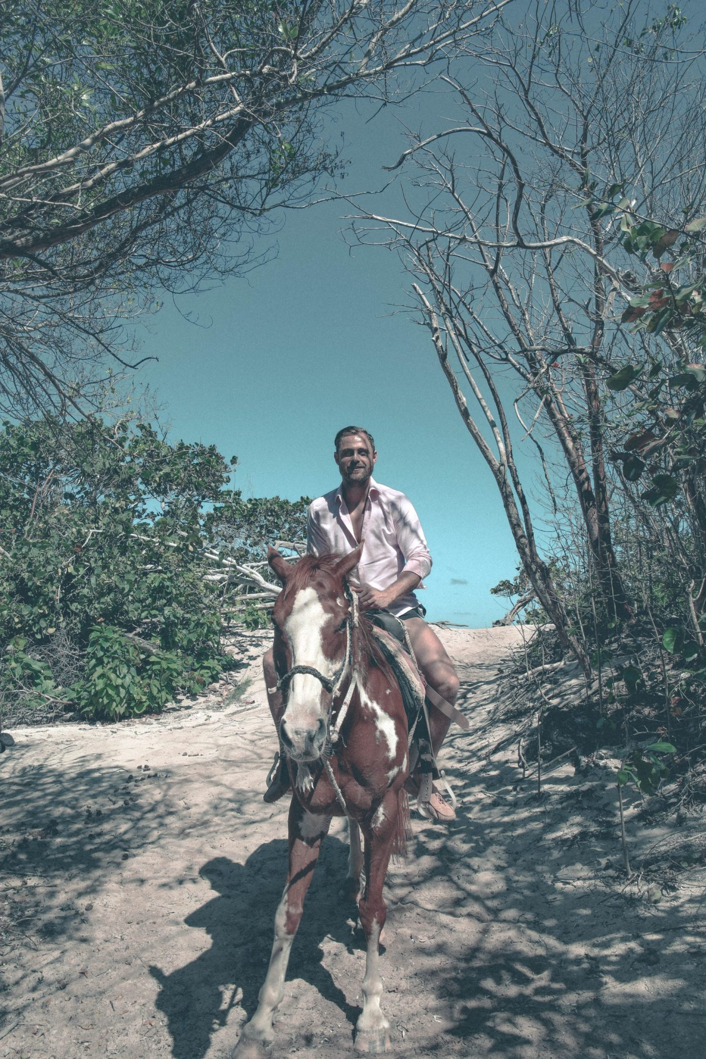 Horse Ride Beach Cayman Island