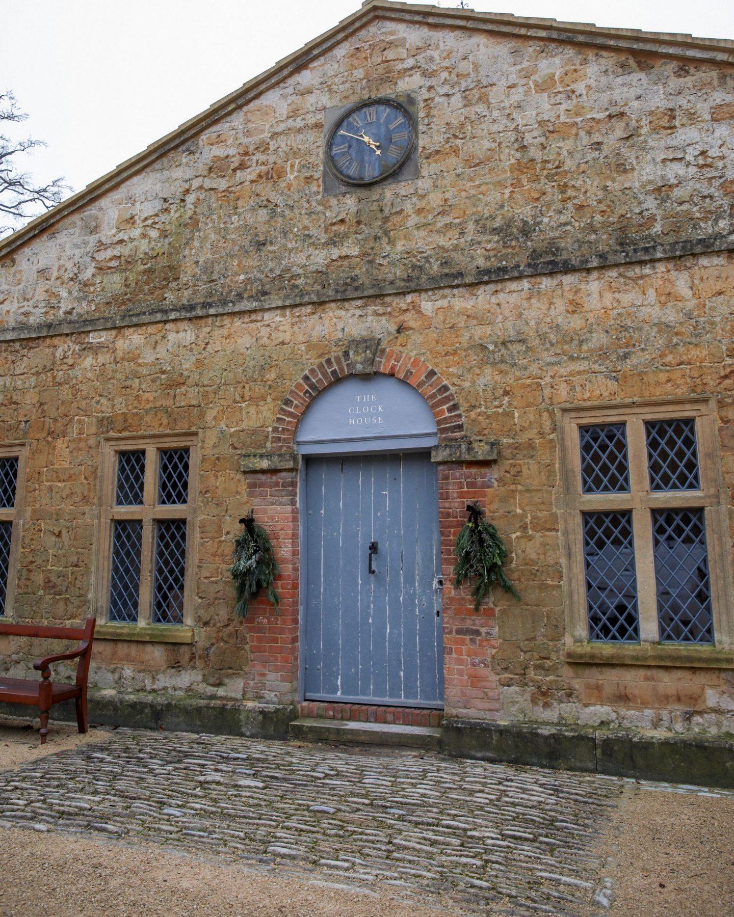 Newt In Somerset
