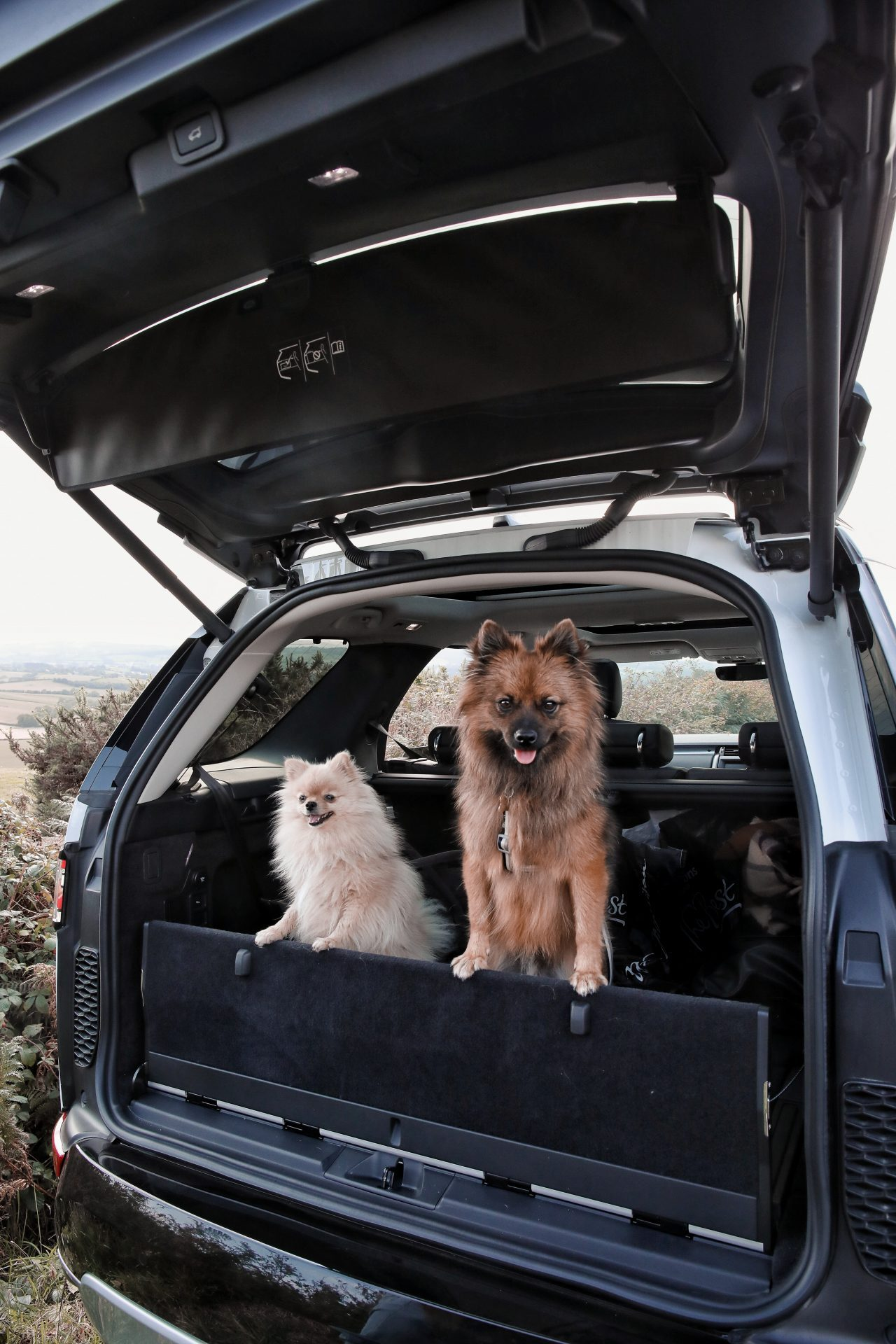 Land Rover Discovery HSE Landmark 2019