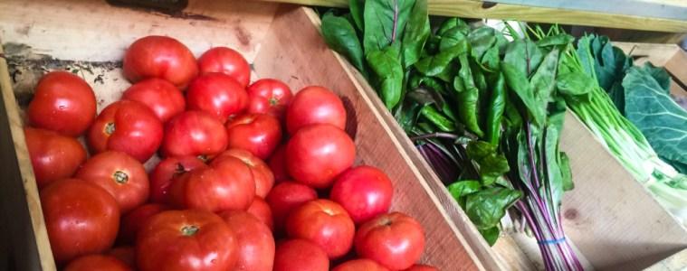 Truckin Tomato