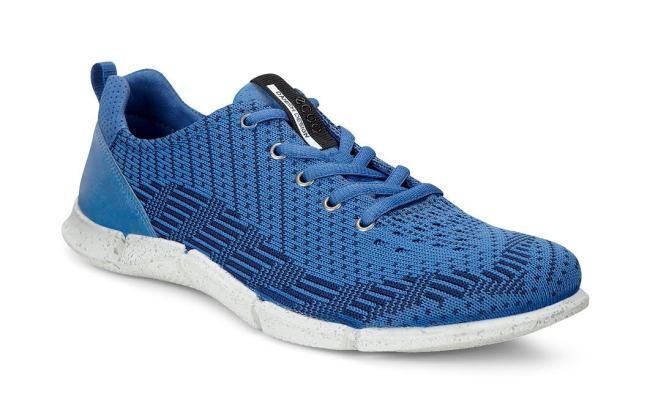 ECCO_SHOES_BLUE