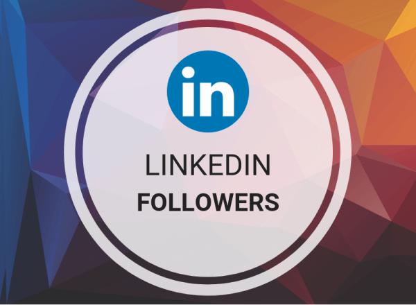 LinkedIn Followers (Person/Company)