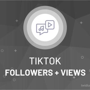 Buy TikTok Followers + Views
