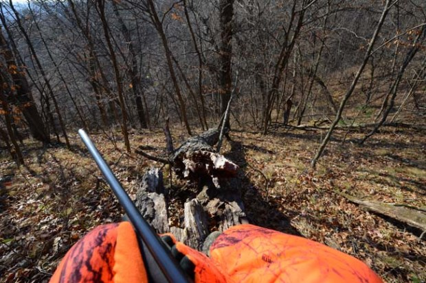 The view of outdoors editor Dave Orrick Nov. 7, 2015, opening day for firearms deer hunting in Minnesota. (Pioneer Press: Dave Orrick)
