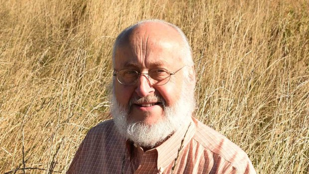 Don Wyse, professor of agronomy and plant genetics at the University of Minnesota's St. Paul campus, with a field of kernza, a perennial grass that his program has helped develop, which could one day outperform wheat both environmentally and economically, photographed on Thursday, October 1, 2015. (Pioneer Press: Scott Takushi)