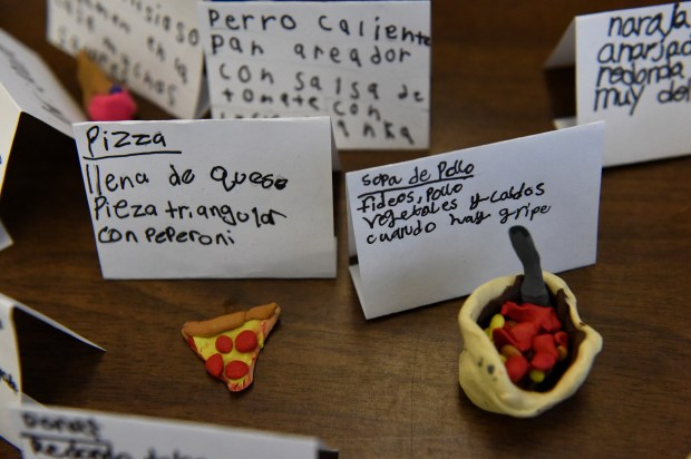 Students in Brittany O'Connor's dual language immersion class at Little Canada Elementary School wrote Haiku poems in Spanish describing their favorite foods at the school in Little Canada on Thursday, Feb. 11, 2016. (Pioneer Press: Jean Pieri)