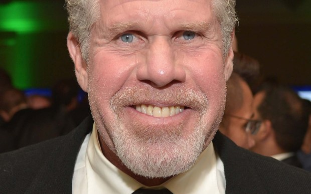 Actor Ron Perlman is 66. (Getty Images: Charley Gallay)