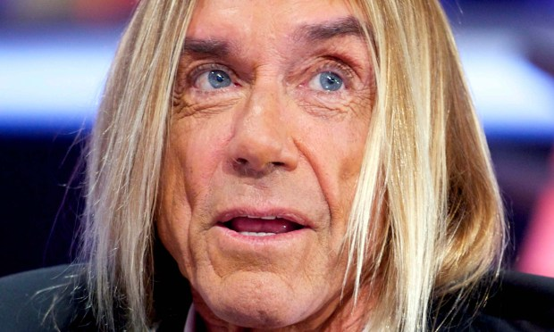 Punk rock icon Iggy Pop is 69. He's in the Rock and Roll Hall of Fame with his band the Stooges. (Getty Images: Juan Naharro Gimenez)