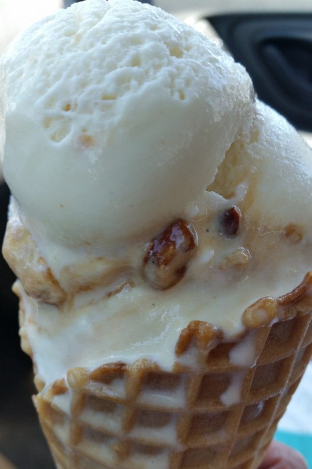 The Elvis: Homemade banana ice cream infused with creamy peanut butter served in a cup or waffle cone. At R&R Ice Cream on the southeast corner of Randall Avenue and Underwood Street. (Courtesy of Minnesota State Fair)