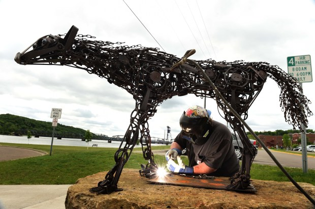 "Welder and artist John Hughes installs ""Trapped,"" a life-sized depiction of a female wolf made out of animal traps by Dale Lewis, in downtown Stillwater, Wednesday, June 1, 2016. (Pioneer Press: Scott Takushi)"