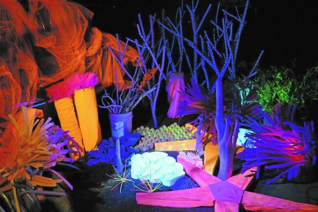"""The Illuminated Reef"" (Courtesy photo)"