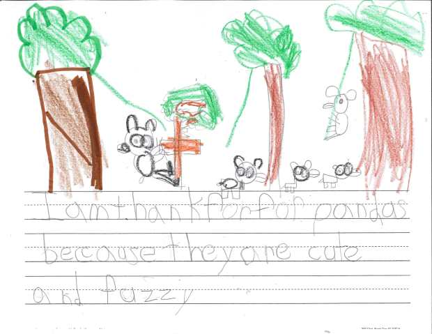 """I am thankful for pandas because they are cute and fuzzy."" — Finn L., Roseville, St. Rose of Lima"