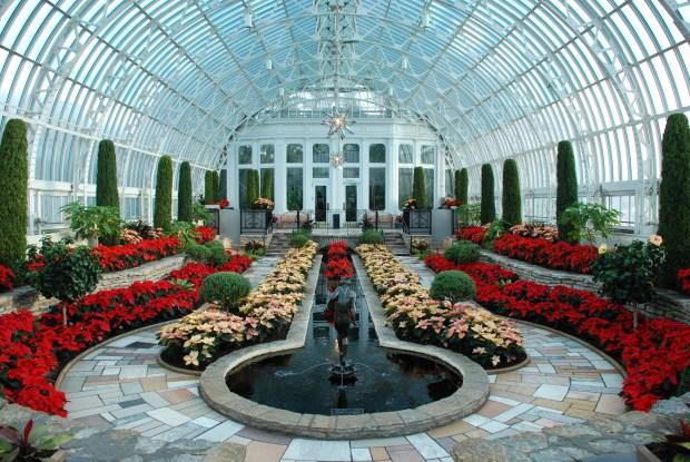 Holiday Flower Show at Como Park Conservatory. (Photo courtesy Como Park)