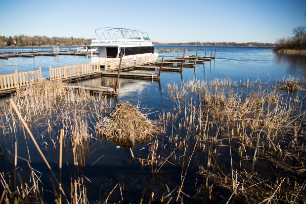 A muskrat hut sits prominently in front of Brian McGoldrick's business, Admiral D's, on Monday, Nov. 21, 2016. Along with the low water levels, muskrat huts have been popping up on the shorelines of White Bear Lake. Low water levels have also rendered McGoldrick's public boat launch unusable. The boat launch which once serviced 100-150 boats in an average in-season weekend, has now been closed for 3 years. (Pioneer Press: Liam James Doyle)