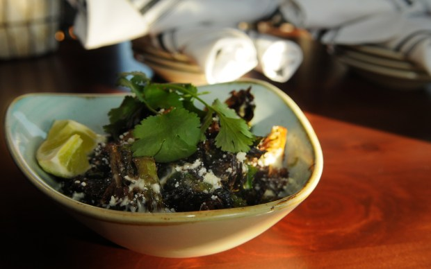 """Brussels sprouts """"elote style"""" ($9), is offered as a small plate or could be shared as an appetizer among friends at Pajarito. (Pioneer Press: Ginger Pinson)"""