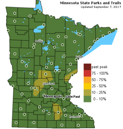 Leaves are just starting to turn in Minnesota. (Courtesy MNDNR)