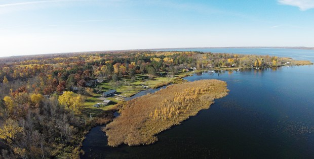 A monstrous bog that broke off the shoreline a few weeks ago in Merrifield Bay on North Long Lake just outside of Brainerd continues to amaze residents. (Steve Kohls / Forum News Serivce)