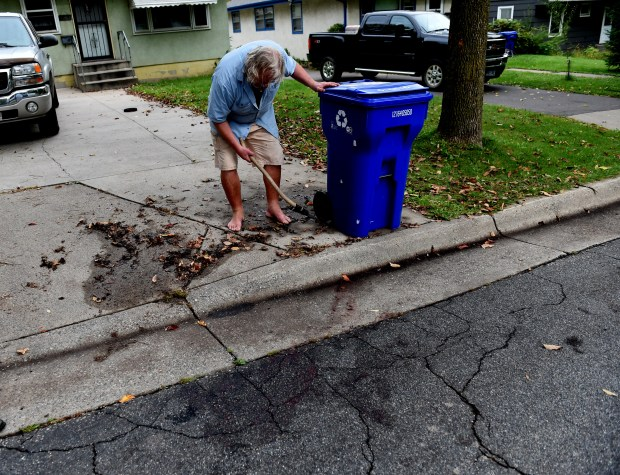 "Ken Krieglmeier looks for buckshot with his metal detector on Friday, Oct. 6, 2017 at the site of a fatal shooting on Euclid Street in the Dayton's Bluff neighborhood about 6 p.m. Thursday. St. Paul police officers fatally shot a man Thursday after they were called to ""a violent domestic"" in which the man fired a gun at a woman.  (Jean Pieri / Pioneer Press)"