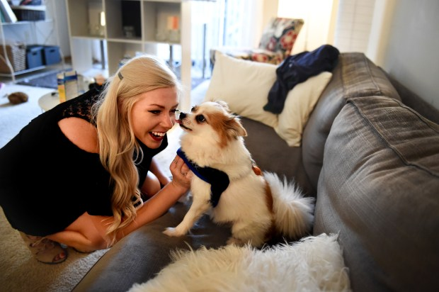 Ella Dorner is greeted by Rupert, her Pomeranian Chihuahua Mix as soon as she enters her apartment in Minneapolis Friday, Sept. 22, 2017. Dorner, who is now a motivational speaker, sustained a traumatic brain injury after falling down steps in her Stillwater home in 2008 at age 15. She had to relearn who her parents were. For the first several days after hitting her head and being diagnosed with retrograde amnesia, Dorner forgot not only her entire life before the accident, but also each day of recovery. (Jean Pieri / Pioneer Press)