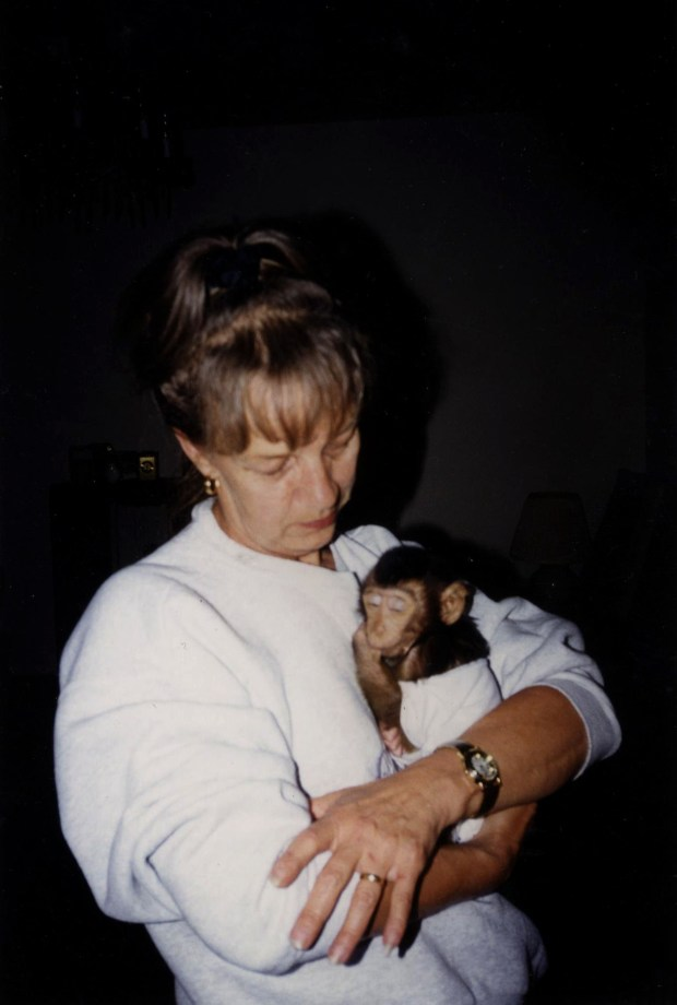 "Beverly Carlson holds the 4- or -5-month-old Mikee after she and her husband, Roy, got the macaque monkey some 19 years ago from an exotic animal dealer. ""Mikee could fit in the palm of your hand,"" Roy said. (Photo courtesy of Roy Carlson)"