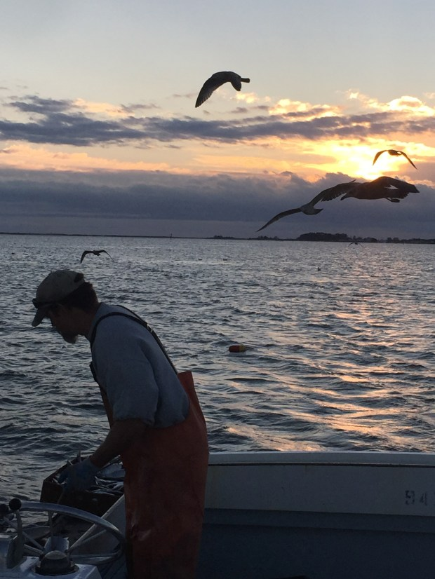 As dawn breaks, waterman Lee Smith hauls crab pots aboard the Sea Rambler. (Courtesy of William Gurstelle)