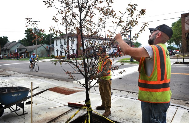 Ryan Nelson, right, from Great Northern Landscape in Nowthen, Minn., prunes a crab apple tree in Afton on June 27, 2018, in preparation for the town's annual Fourth of July parade. (Jean Pieri / Pioneer Press)