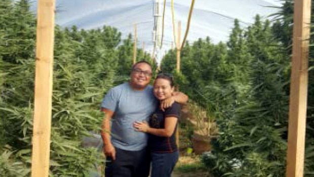 St  Paul couple grew pot in California, sold it in MN, feds say