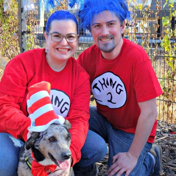 Dogs, owners get into Halloween spirit at annual Lowertown costume party