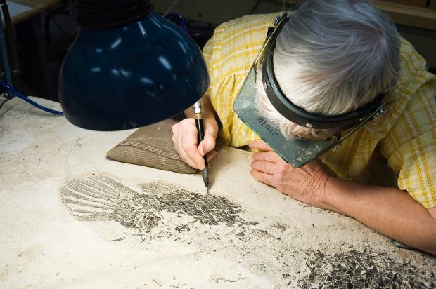 Obituary: Longtime Science Museum volunteer Kay Blair specialized in fossils