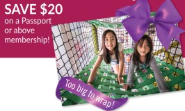 Save $20 on a Minnesota Children's Museum Gift Membership (through January 15th)