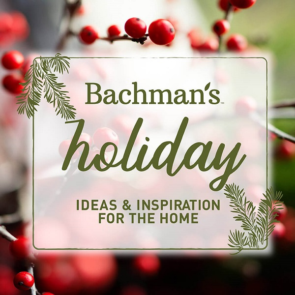 Bachman's Holiday Home