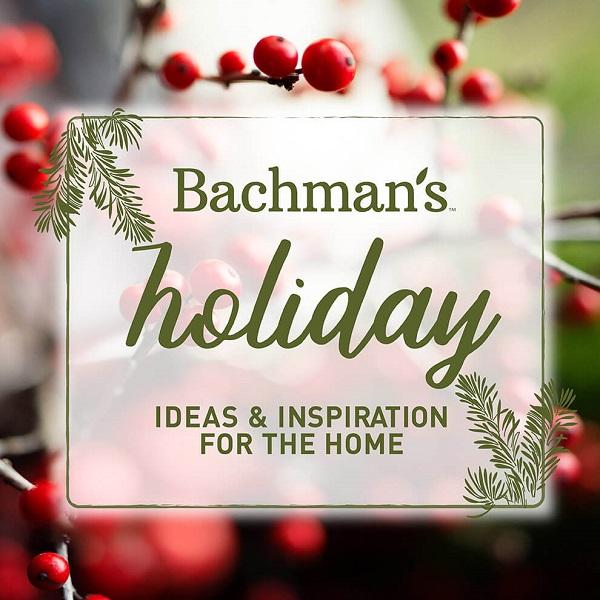 Bachman's Holiday Home