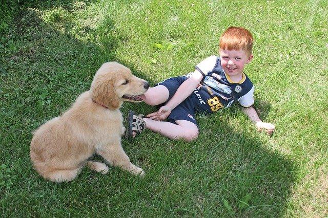 Puppy Kid