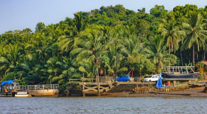 Chorao Island-goa