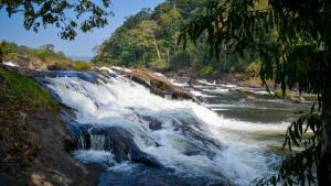 Vazhachal Waterfalls
