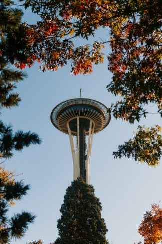 Cheap things to do in Seattle