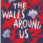 TheWallsAroundUsbyNovaRenSuma