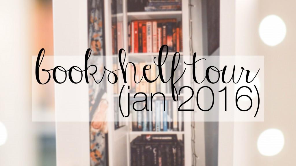 bookshelf tour 1.16