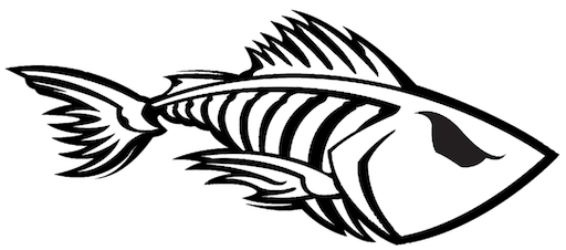 Twisted Fish Boat Rentals