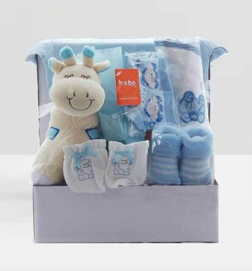 baby-gift-basket-for-boys-giraffee