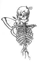 Day 5 - Skeleton
