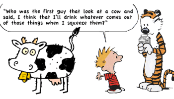 The Best Calvin And Hobbes Parodies