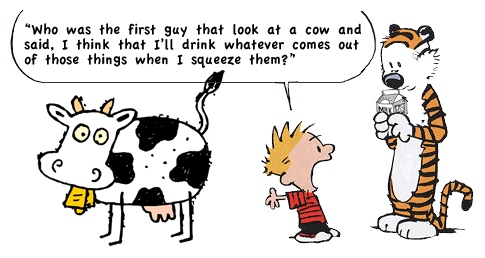 Who First Decided To Drink Milk