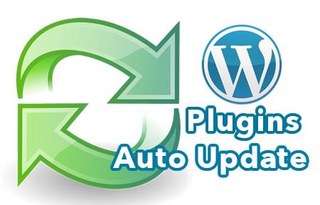 WordPress Plugin Auto Updates