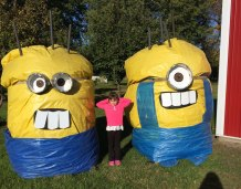 Minion Hay Bales & Lily