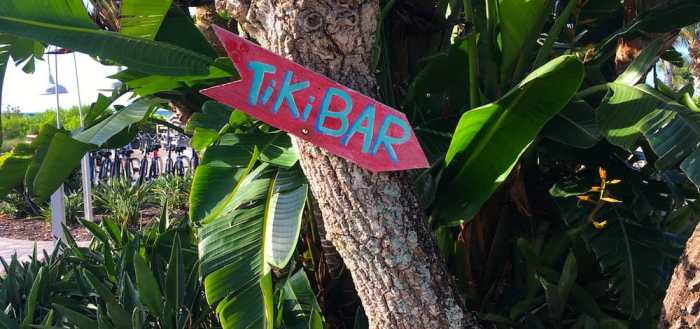 Tree with a tiki bar sign on it.