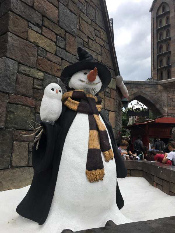 A snowman dressed up like a wizard with an owl.