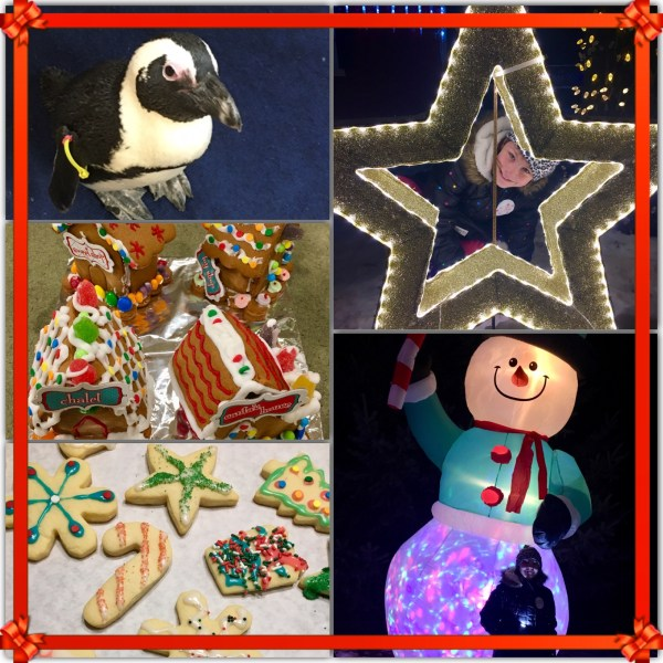 Penguins, Cookies, Christmas Lights