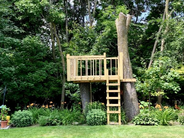 Finished Treehouse